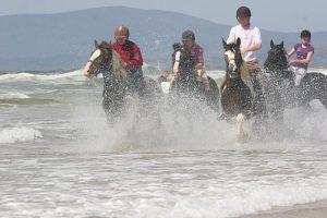 Reitebn am Strand - erleb Reitferien mit der Familei in Irland